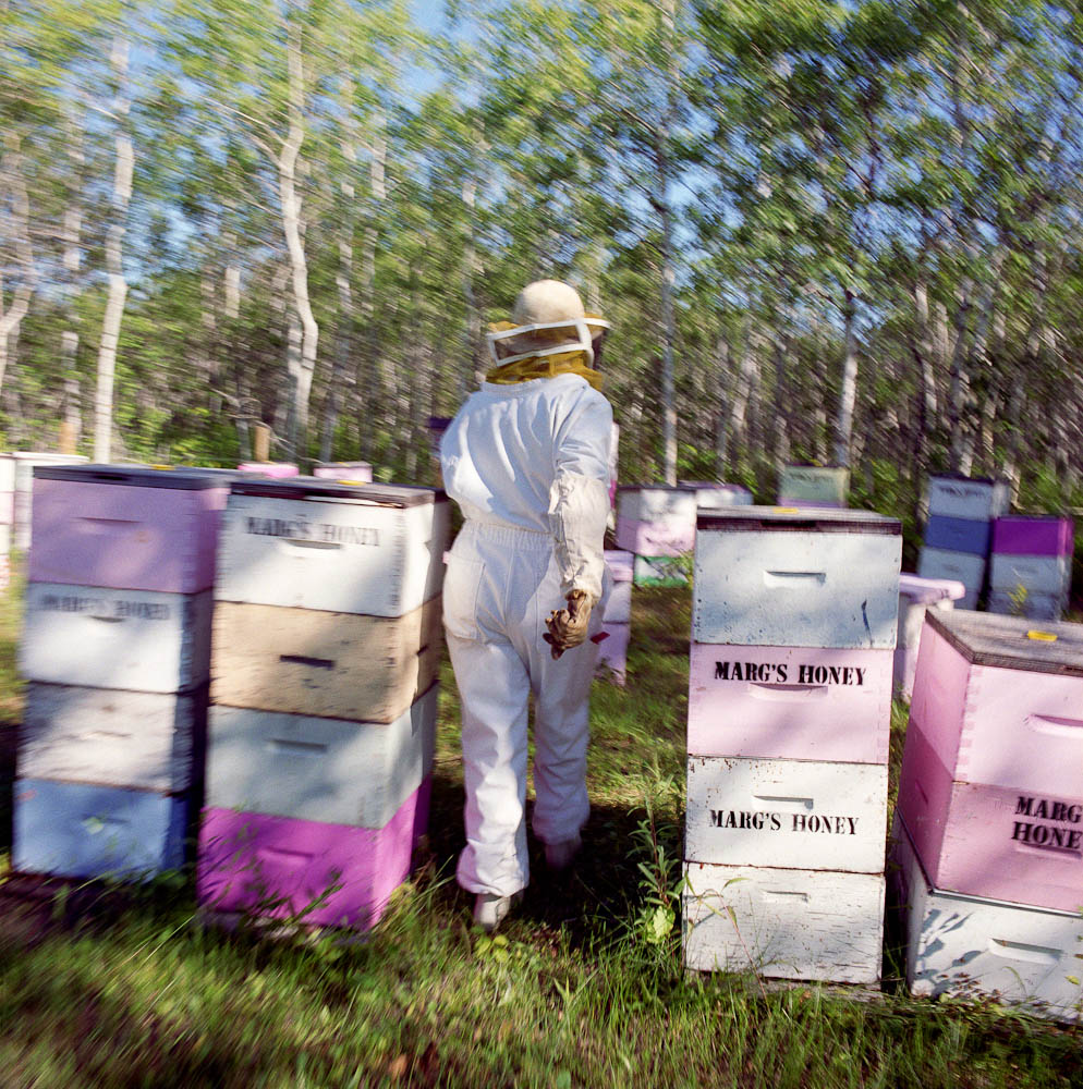 Beekeeper 2 by winnipeg editorial photographer
