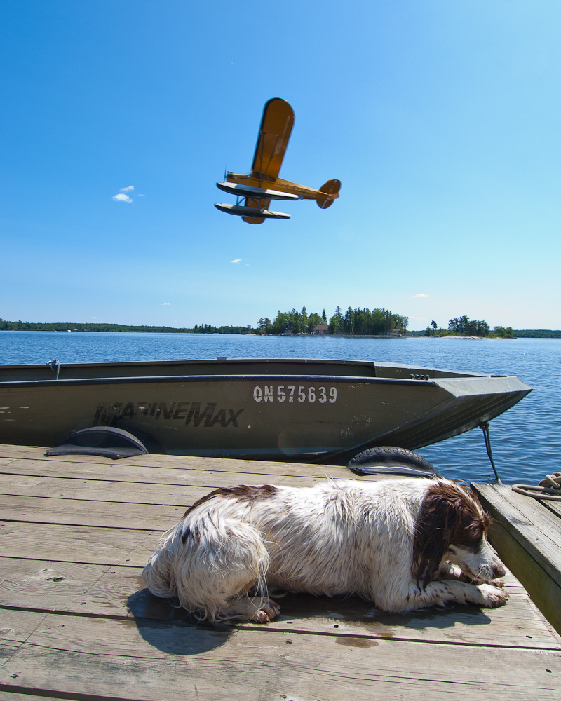 Floatplane and dog by Winnipeg editorial photographer